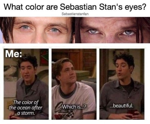 pinterest bad jokes sebastian stan bucky barnes marvel cacw caws
