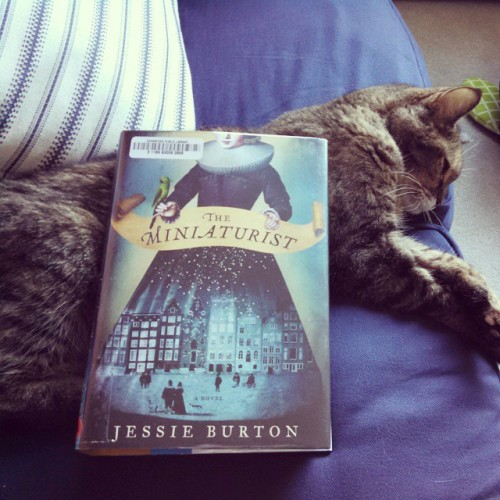 My #fridayreads/#weekendreads is The Miniaturist by Jessie Burton. I ought to be unpacking but only have a brief window before book is due…