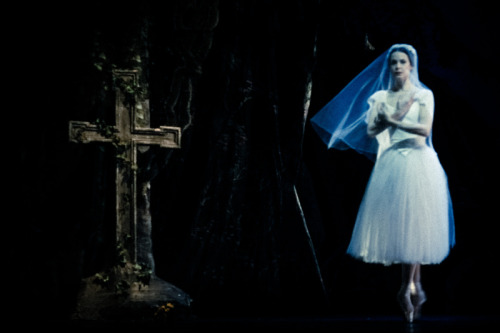 Lara O'Brien as Myrtha, the Queen of the Willis during the famous bouree sequence during Act II of Carolina Ballet's GisellePhoto by Tim Lytvinenko