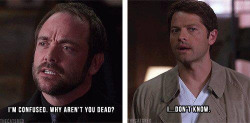 supernaturaldeansavesammy:  mustard-dont-be-silly:  basically supernatural in a nutshell  accurate