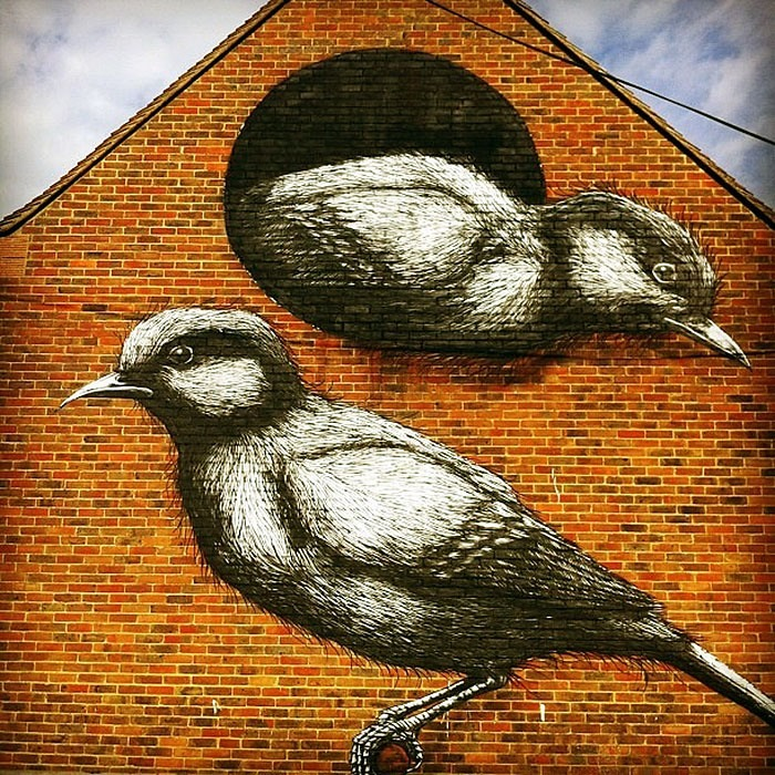 ROA in Chichester, UK.