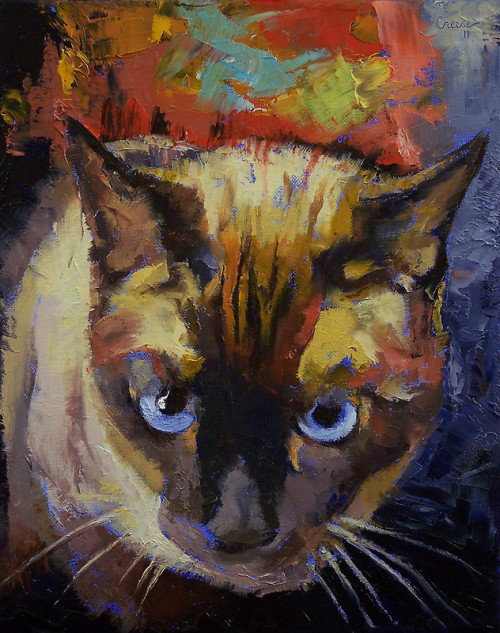 "creese:  ""Seal Point Siamese"" by Michael Creese"