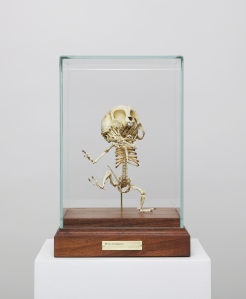yatzer:  HYUNGKOO LEE, Mus Animatus , 2008. Resin, stainless steel wires, springs, oil paint, brass, glass, wood , 32 4/5 × 22 × 22 cm, Edition of 4 / Gallery Skape