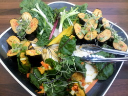 Nori & Chard Rolls with Live Cashew Carrot Pate recipe by Jason Lee See what one student is saying about The Wellspring School for Healing Arts' Wholistic Nutrition Program 8 servings PATE  1 c raw cashews   1 c carrots chopped   2 Tb water   2 Tb lemon juice   2 tsp soy sauce   1/2 tsp agave raw   1 Tb ginger peeled and chopped   1/2 tsp garlic chopped   1 tsp turmeric root chopped  THE REST OF THE ROLL  4 ea nori sheets   4 ea red, swiss or rainbow chard leaves   Carrots fine julienned   Sprouts or micro greens  Puree all ingredients for pate until smooth. Refrigerate for 1 hour. For Nori rolls, layout nori sheets on sushi mat or plastic wrap and scoop pate on bottom edge, about 1/4th cup. Add julienned carrots. Roll away from you and wet edge to seal. With a very sharp knife cut into bite size rolls. For chard rolls, lay leaf flat. Remove largest part of stem. If leaf is very large cut into 4 inch sections. Place 2-3 Tb of pate on bottom end of leaf with julienned carrots and fold into rectangle shape. Serve with micro greens + Bragg's Liquid Aminos or Tamari Organic Soy Sauce (GF). Eat and let all of the tantalizing flavors make your tastebuds sing!