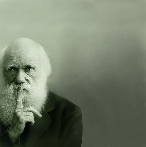 littlespectacle:  Charles Darwin (via portrait)