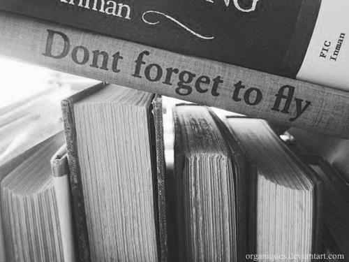kyleezee:  Fly on We Heart It. http://weheartit.com/entry/48098681/via/t_pan