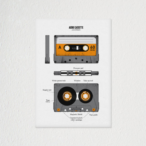 Audio Cassette Anatomy