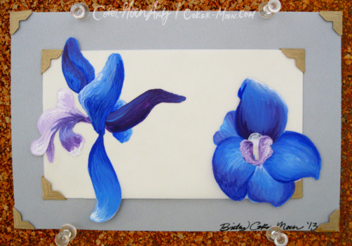 cokermoenarts:  Framed Larkspur by Coker-Moen Arts Etsy | Facebook  Little side project I just did :)