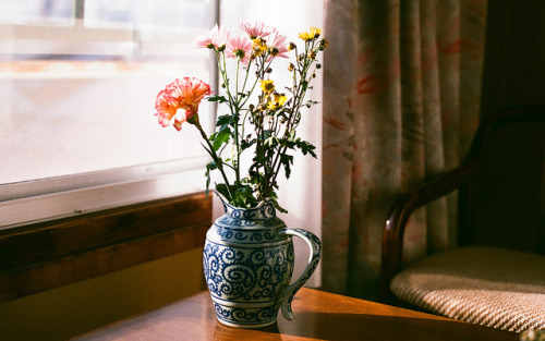 satansbaby:  Hotel flowers by A couple a three things on Flickr.