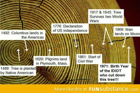 funsubstance:  Life Of A Tree  Wow