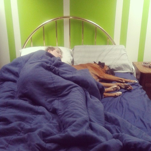 t-okeefe2214:  Sleepy heads.