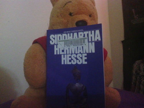 Now reading. Pretend Pooh Bear is me.