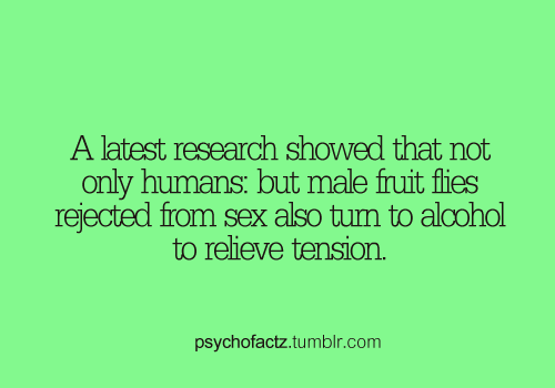 psychofactz:  More Facts on Psychofacts :)  DRUNKIES!