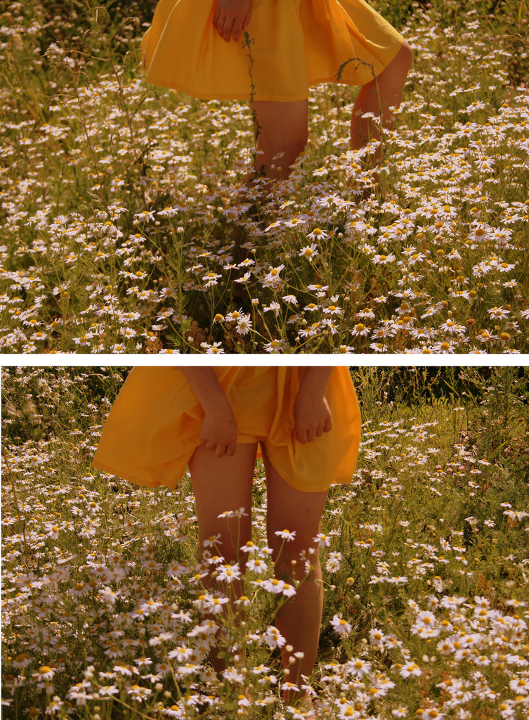 I took this of my best friend's legs in a field of daisies we found accidentally while biking. I miss the summer.