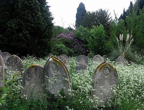 dark graveyard southern gothic