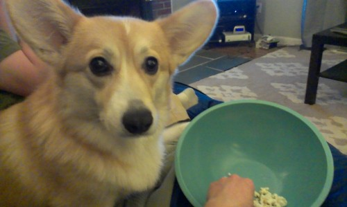 Mommy…why you no share your popcorn?