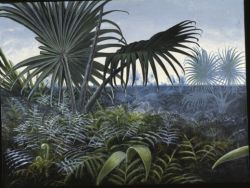 Mary Parrish Reconstruction of palmetto-dominated vegetation at Big Cedar Ridge. In addition to the palmetto, Sabalites sp., this painting shows the most abundant fern found in this area, F2 (family unknown). (Mary Parrish reconstruction)