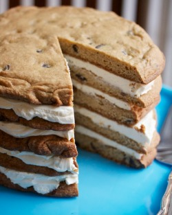 foodopia:  giant chocolate chip cookie layer cake: recipe here