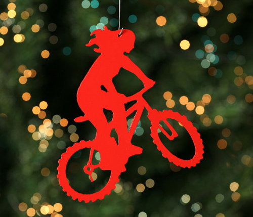 Merry Xmas everyone! And may all your cycling dreams come true in 2013!