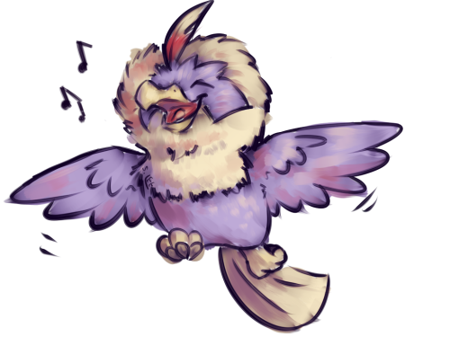 A rather triumphant rufflet.