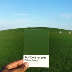 The hill was looking mighty green today :) Willow Bough Pantone 18-0119 #thepantoneproject #samehilldifferentday by pauloctavious http://bit.ly/110BStX