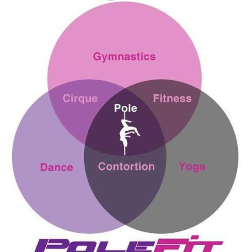 hannahelizabethpolefitness:  100% what pole is to me!  <3  Yes. Yes and YES!!! The work is real.