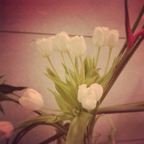 This hotel is amazing they knew I love this flower #Tulip #flower #amazing #fairmont_hotel #Mekka #love #instaflower