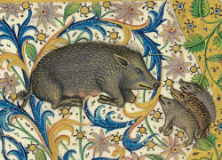 Three Little Boars Gaston Phoebus, Le Livre de la chasse, Paris ca. 1407. NY, Morgan, MS M. 1044, fol. 1v