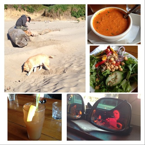 #beach #fun #sea #ocean #dogs #lab #longisland #sunnies #soup #salad #healthylife #summer?