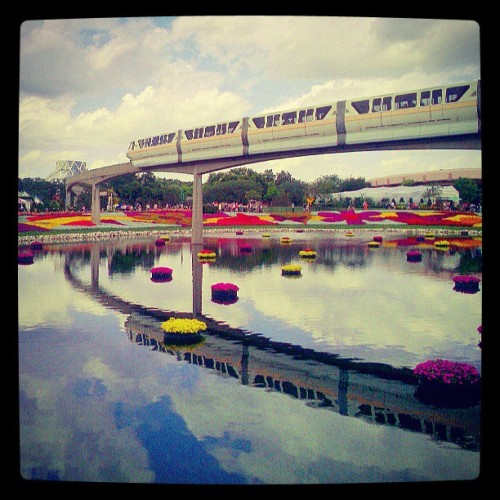 Reflections of #epcot…. #wdw #disney #waltdisneyworld #disneyworld #epcotcenter #flowers #monorail #reflection (at Epcot)