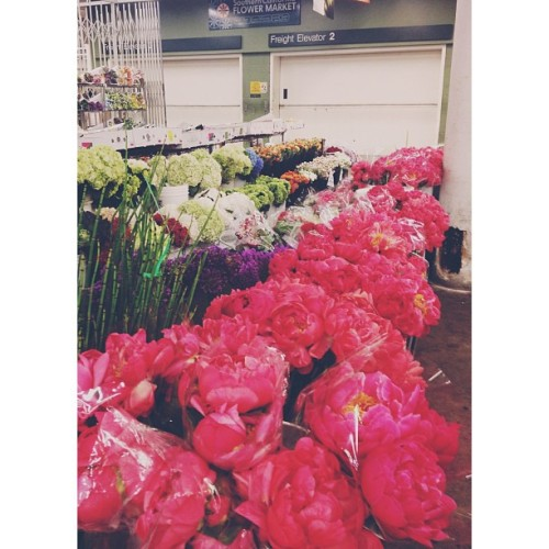 4am LA mart beauties. || #jennybfloraldesign #vscocam #imtired