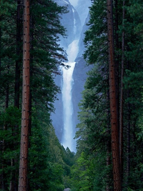 0mnis-e:  Lower Yosemite Falls, By Debbyurgo.