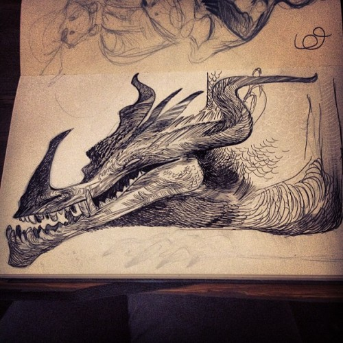 nataliehall:  Sketch break