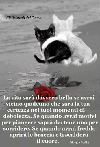 Cartoline D Amore Solo Immagini