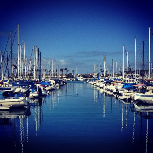 at Alamitos Bay Marina