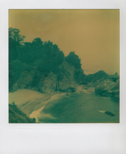 Polaroid SX-70Julia Pfeiffer Burns State Park | Monterey, CA2010