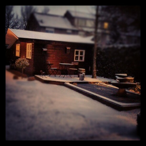 #beautyfull #garden #snow #dark #lake