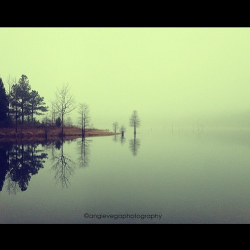 Foggy Falls Lake. #iphonesia #photowall #fog #TAGSTAGRAM.APP #landscape #landscapes #landscapestyles_gf #fabscape #ic_landscapes #igcentric_nature #landscape_lovers #landscapelovers #landscapelover #paisaje #paisagem #paysage #epic #beautiful #tagsta_nature #tagsta #tagstagramers #latergram #instahub #view #insta_land #awesome_shots #instaworld_love #igphoto #goodday #clubsocial (at Falls Lake Trail)