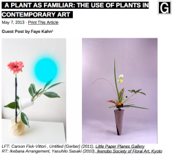 A Plant As Familiar: The Use Of Plants In Contemporary Art by Faye Kahn on Bad at Sports