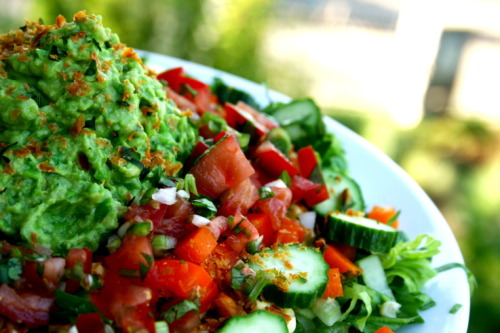 rawlivingfoods:  Savory Mexican Salad with Guacamole This raw meal never fails to satisfy! It's not only delicious but it's also a nutritional powerhouse. Salad Ingredients ½ Bunch Romaine Lettuce chopped ½ Bunch Lacinato Kale de-stemmed and chopped Cucumber slices Mixed Baby Greens Sprouts Salsa: 2 Heirloom Tomatoes 1 Red Bell Pepper 1 Stalk Celery Handful Cilantro ¼ Onion ½ Lemon juiced Dash of Cayenne Directions: Chop and mix all ingredients in a large bowl or add to a food processor.  Guacamole: 2 Avocados Handful Cilantro 1 Clove Garlic ½ Lemon juiced Directions: Chop and mix all ingredients in a large bowl or add to a food processor.  Enjoy! :)