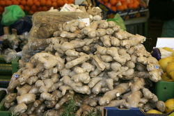 laboratoryequipment:  Ginger Compounds May Treat AsthmaGourmands and foodies everywhere have long recognized ginger as a great way to add a little peppery zing to both sweet and savory dishes; now, a study from researchers at Columbia Univ. shows purified components of the spicy root also may have properties that help asthma patients breathe more easily.Read more: science