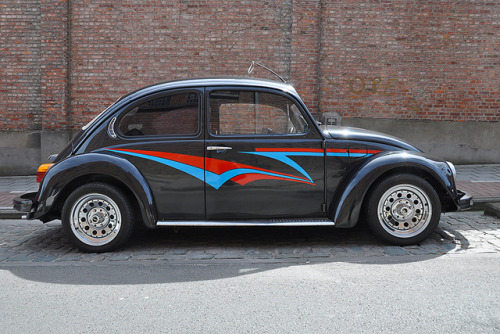 sic56:  Need for Speed Beetle by Drriss on Flickr.