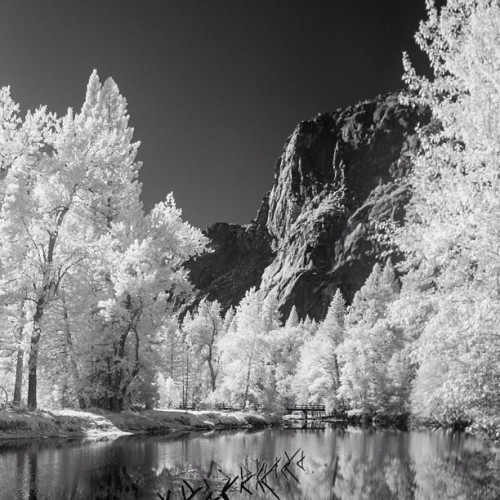 Winter Yosemite. #infrared #picoftheday #landscape #california #californialandscape #monochrome #instanature #instagood #instamood #naturalworld #instalandscape #forest #sierraclub #johnmuir #nationalpark #yosemite #yosemitenationalpark (at Yosemite, CA)