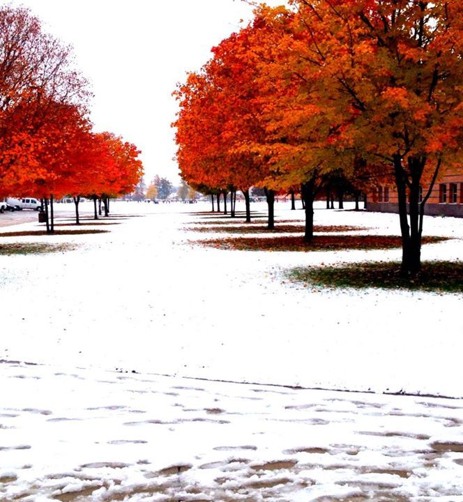 Fall in MichiganView Post