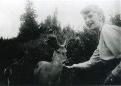 Sylvia Plath feeding deer in Ontario, Canada, 1959