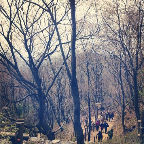 Hiking in Seoul!