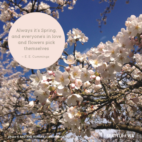 """Always it's Spring, and everyone's in love and flowers pick themselves."" ~ E. E. Cummings   (photo RAH)"