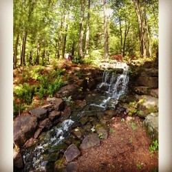 #waterfall #trees #outside #outdoors #azalea #path #spring #mothersday #green #rocks #stones #water #indiana