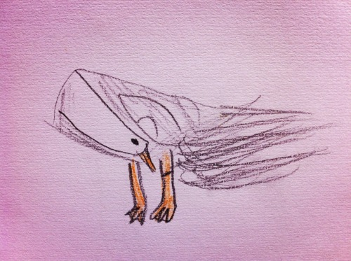 2013.5.5 Zoo sketching Duck  Drawing by Bonchan