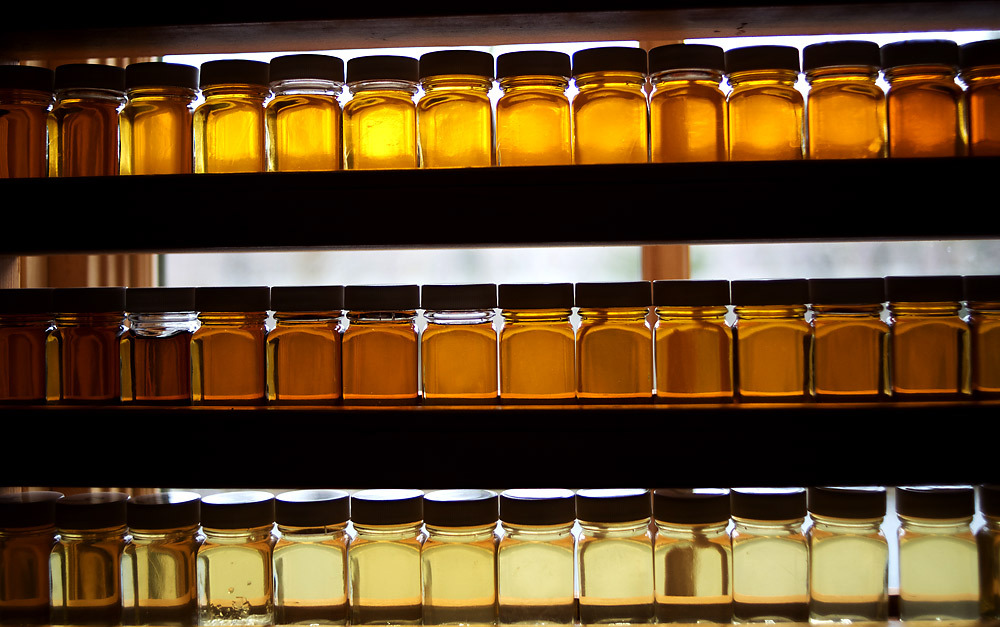 The Week in Pictures for April 8th:  Samples of batches of syrup sit on a windowsill inside the sugarhouse on Solar Sweet Maple Farm in Lincoln. The sugarhouse is made from recycled and energy efficient materials, powered by the sun and heated from the wood harvested from their property. The farm is on 200 acres of managed forested land and tap 15,000 maple trees. (Photo by MADDIE MCGARVEY/FREE PRESS)